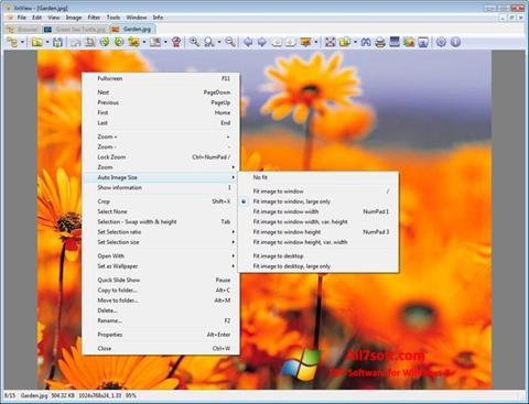 Petikan skrin XnView untuk Windows 7